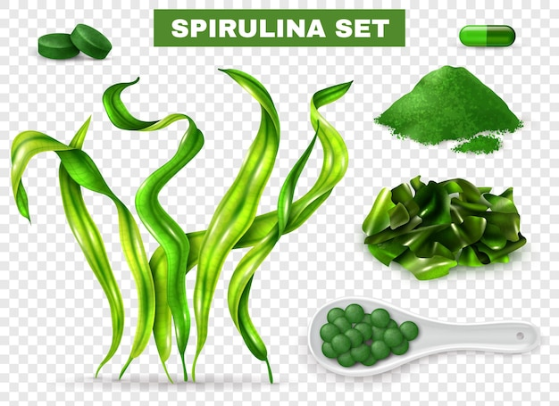 Conjunto realista de espirulina