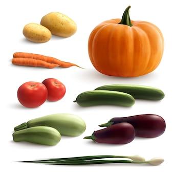 Conjunto realista de legumes