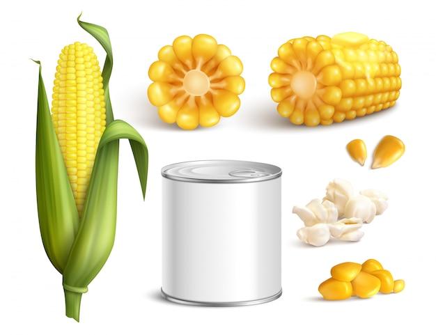 Conjunto realista de milho