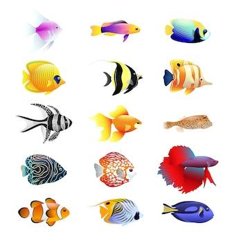 Conjunto realista dos desenhos animados de peixes tropicais. conjunto multicolorido de nove tipos diferentes de peixes de recife de coral