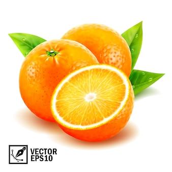 Conjunto realista frescas laranjas inteiras e fatias de laranja com folhas e gotas de orvalho. malha artesanal editável