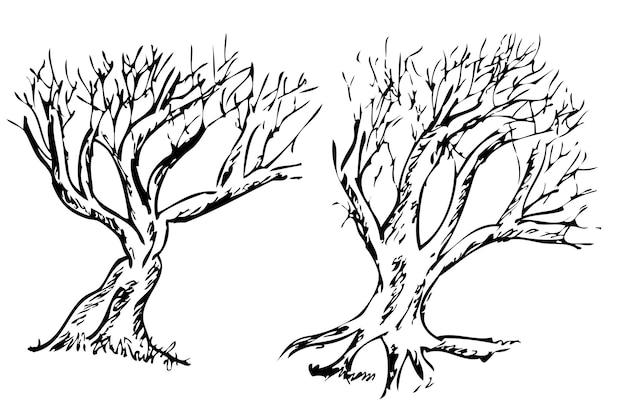Conjunto simples de 2 vetores de desenho à mão, grande árvore morta