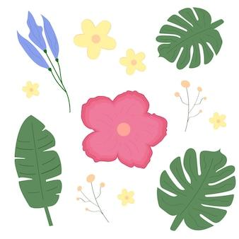 Conjunto tropical de flores e plantas