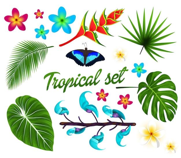 Conjunto tropical de folhas da selva com flores tropicais de plumeria
