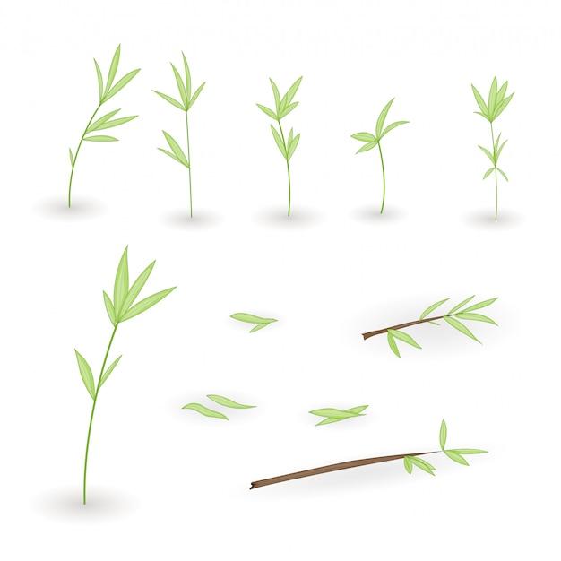 Conjuntos de galhos de árvores com folhas