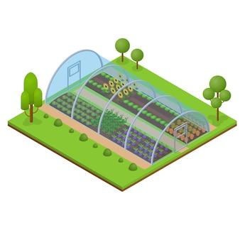 Conservatório de horticultura com vista isométrica com efeito de estufa para ilustração vetorial de plantas, vegetais e flores