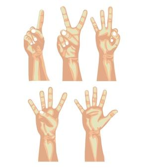 Contagem de mãos