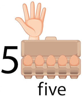 Contando o número cinco com o gesto com a mão e os ovos na caixa