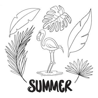 Contorno de verão