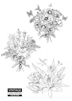 Contorno floral para colorir coleções vintage