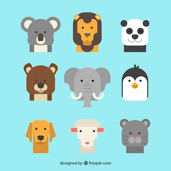Cool conjunto de caras de animais planos
