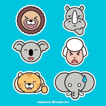 Cool conjunto de faces de animais