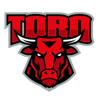 Cool toros sport