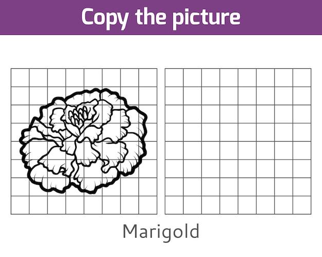 Copie a imagem, jogo educativo para crianças, marigold