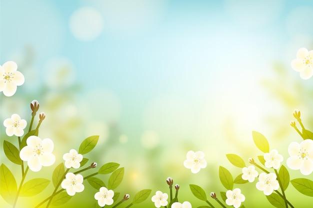 Copie o fundo floral da primavera do espaço e o céu azul