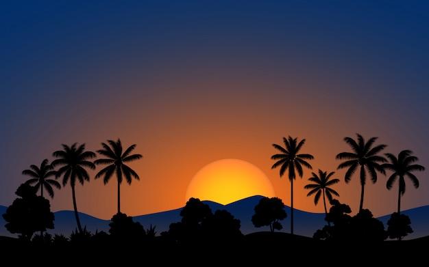 Coqueiro na floresta com sol brilhante