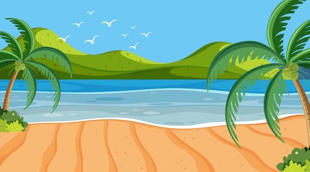 Coqueiros de cena de natureza na praia