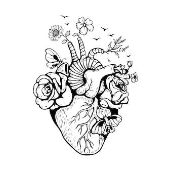 Coração anatômico de ilustração com cogumelos