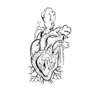 Coração anatômico de ilustração com fumaça