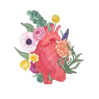 Coração anatômico realista coberto por flores desabrochando e plantas desenhadas à mão no fundo branco. ilustração colorida em estilo vintage para cartão de dia dos namorados, convite para festa.