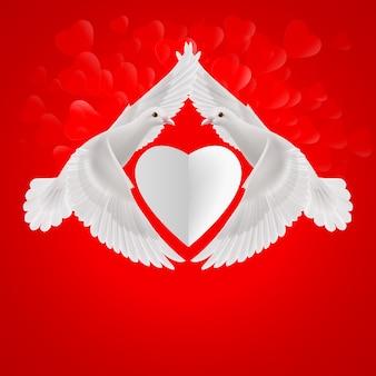 Coração branco entre duas pombas brancas voadoras