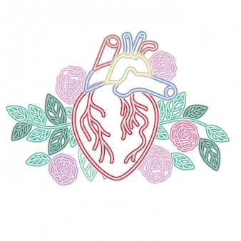 Coração, com, veias, e, flores, isolado, ícone