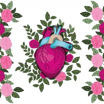 Coração com veias e rosas ícone isolado Vetor Premium