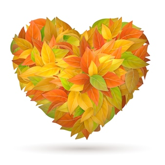 Coração das folhas de outono coloridas.