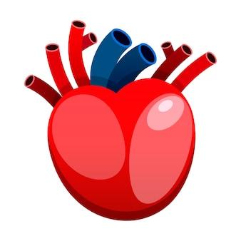 Coração vermelho isolado no vetor de fundo branco