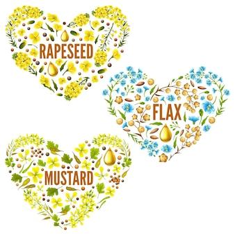 Corações de flor de colza, mostarda de linho