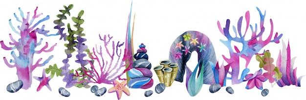 Corais de aquarela e ilustração de pedras do mar