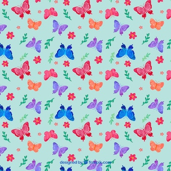 Cores de borboletas