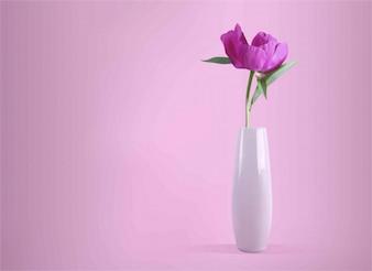 Cores do vaso de flores