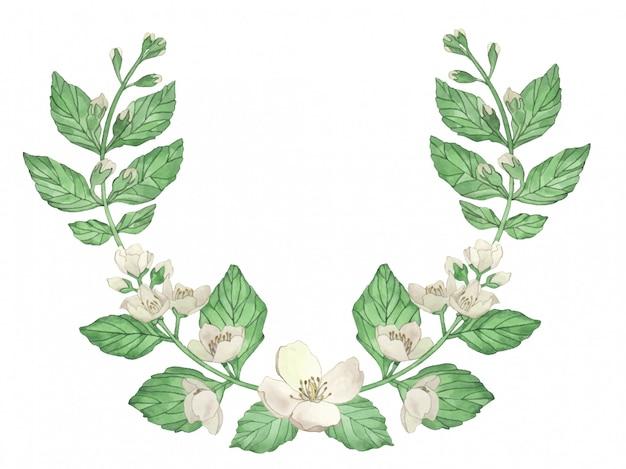 Coroa de flores em aquarela de flores e ramos de jasmim isolado em um fundo branco.