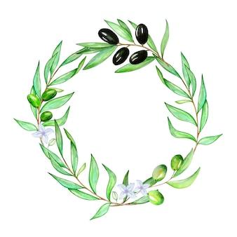 Coroa de flores em aquarela de um galho de uma oliveira com folhas e azeitonas
