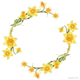 Coroa de flores em aquarela decorativa com flores narcisos amarelos