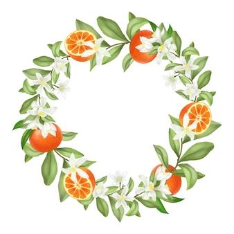 Coroa de galhos de árvores florescendo de tangerina desenhada à mão, flores de tangerina e tangerinas