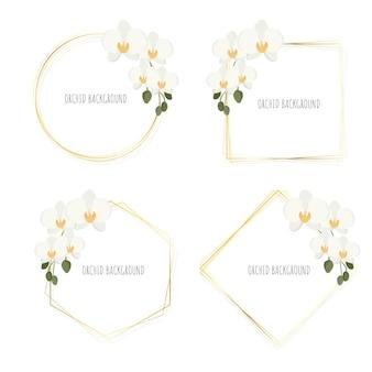 Coroa de orquídea phalaenopsis branca de estilo plano mínimo com coleção de moldura dourada isolada no branco