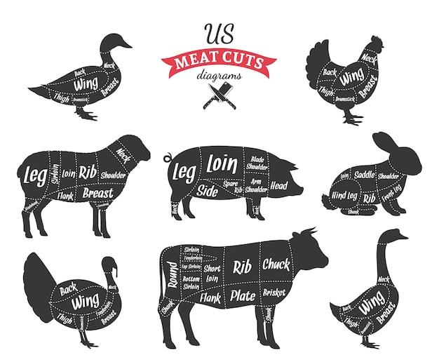 Cortes americanos de carne de porco, cordeiro, coelho, frango, pato, ganso, diagramas de peru