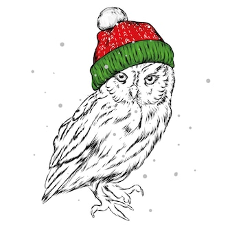 Coruja bonita com um chapéu de papai noel. natal.