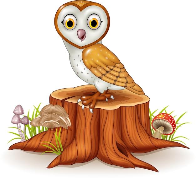 Coruja bonito dos desenhos animados isolada no toco de árvore