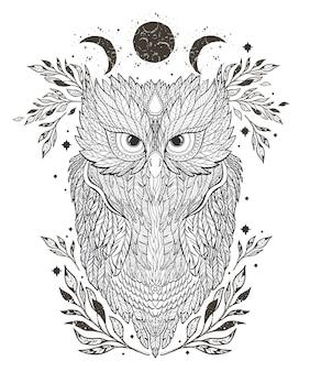 Coruja da ilustração no fundo e na estrela da silhueta da floresta.