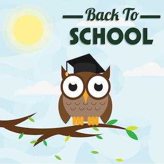 Coruja de volta à escola