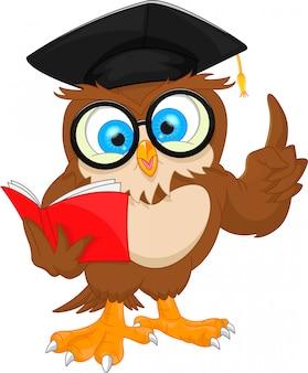 Coruja, desgastar, boné graduação, e, livro leitura