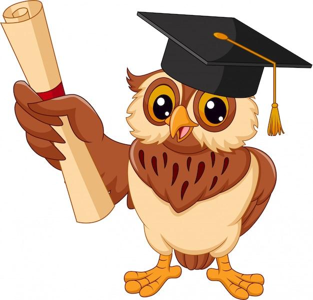 Coruja dos desenhos animados, usando chapéu de formatura, detentor de diploma