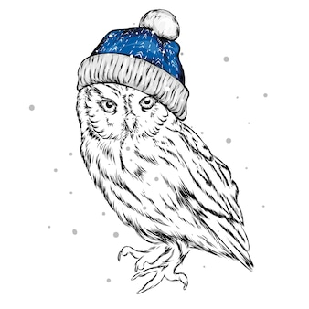 Coruja elegante com chapéu de natal do papai noel