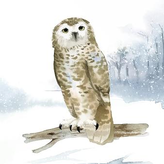 Coruja nevado no vetor de estilo aquarela de inverno