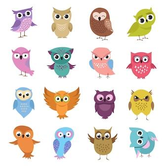 Corujas bonito dos desenhos animados. coleção de vetores de pássaros engraçados floresta