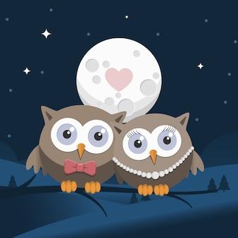 Corujas dos namorados apaixonados à noite