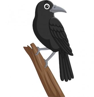 Corvo de desenho animado em pé em um galho de árvore